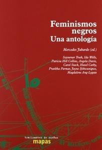 Feminismos Negros. una Antologia